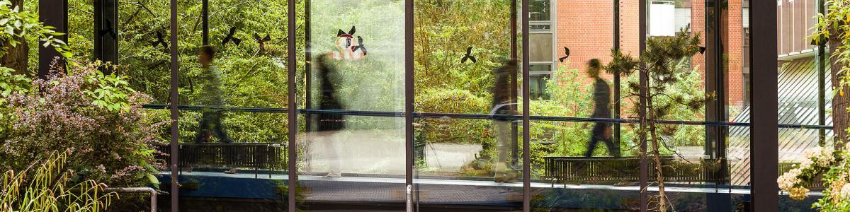 LVR Klinik Bonn im LVR Klinikverbund cover